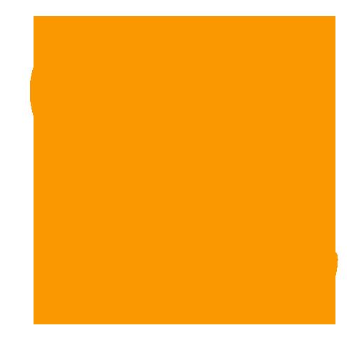 fnt_phone